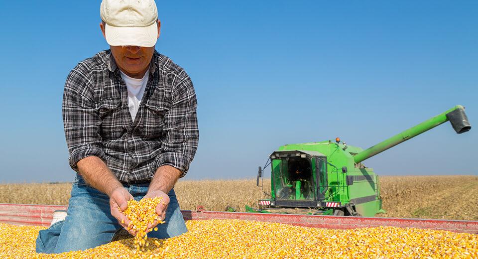 La innovación que los pequeños agricultores necesitan